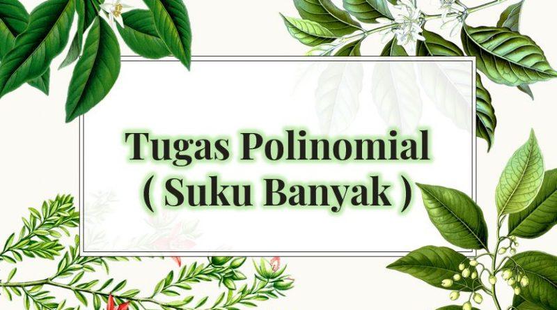 tugas polinomial suku banyak